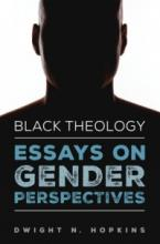 Essays on Gender Perspectives book cover